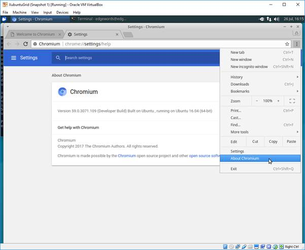 chromium version